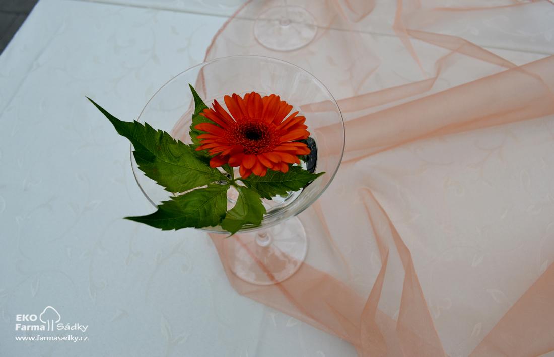 Svatba V Lososove A Bezove Barve Inspirace Agropenzion Sadky